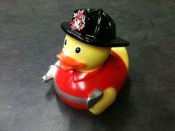 brandweer eend